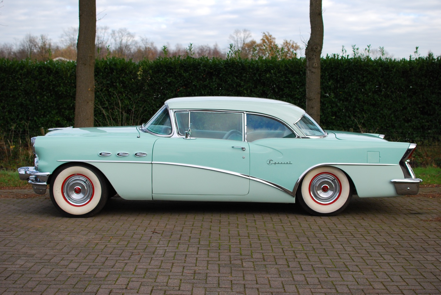 Buick Special two tone