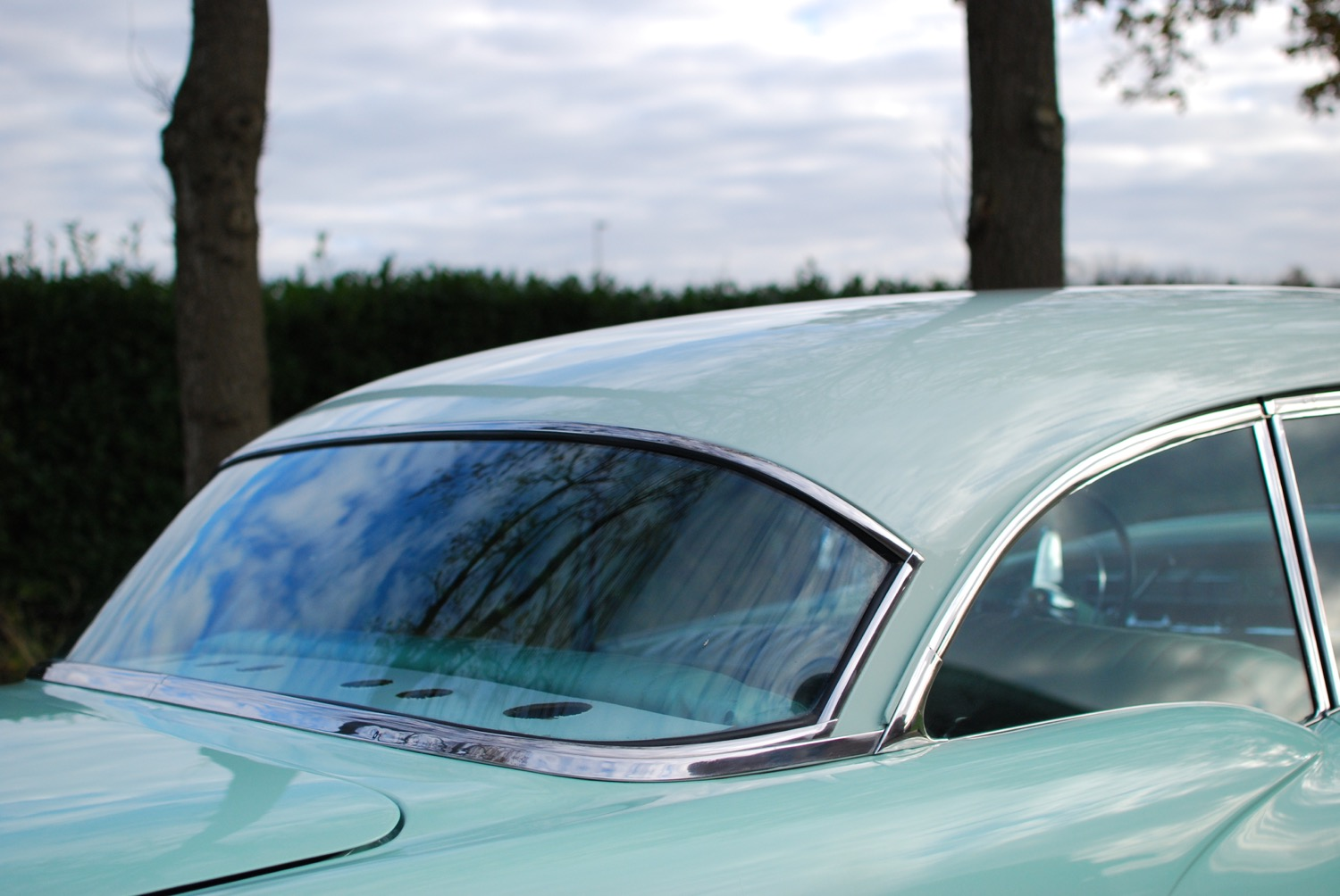 Buick Special roof
